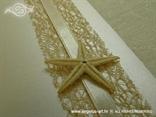 detalj morske zvijezde sa zahvalnice