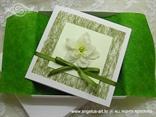 ekskluzivna pozivnica u kutiji sa zelenim dekoracijama i cvijetom