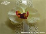 knjiga za vjenčanje s krem orhidejom