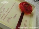 krem crvena ekskluzivna pozivnica za vjenčanje u kutiji s ružom