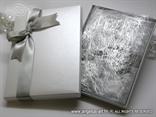 Silver Photo Book